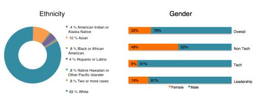 Diversity_InclusionGraph